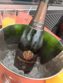 Segura Viudas Champagne for Mimosa Service