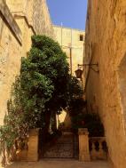Malta - 425