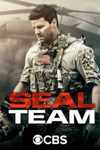 SEAL Team - 8/10