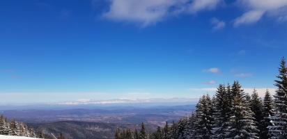 Cookie FM Nirina Borovets Bulgaria Skiing-17