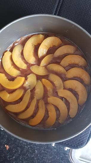 Peach Cake Recipe Cookie FM-8